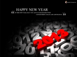 new-year-messages-2013-1024x768